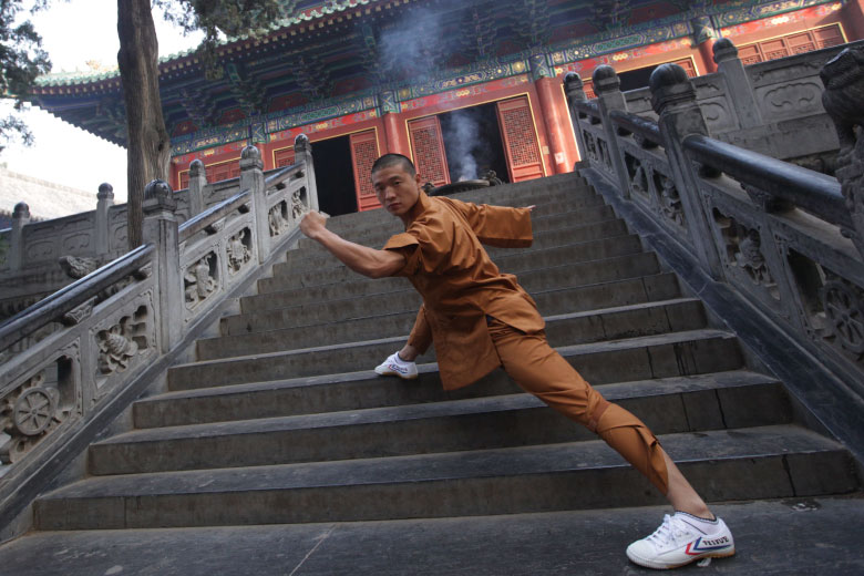 Martial arts with Master Zhu Qiguo