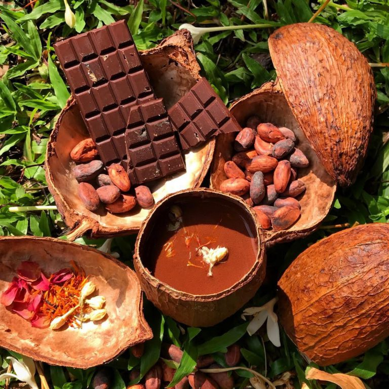 Chocolate and cacao drink tasting